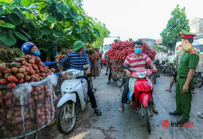 Bắc Giang: Nửa đêm bật dậy đi hái vải, điểm thu mua tắc dài cả cây số - ảnh 8