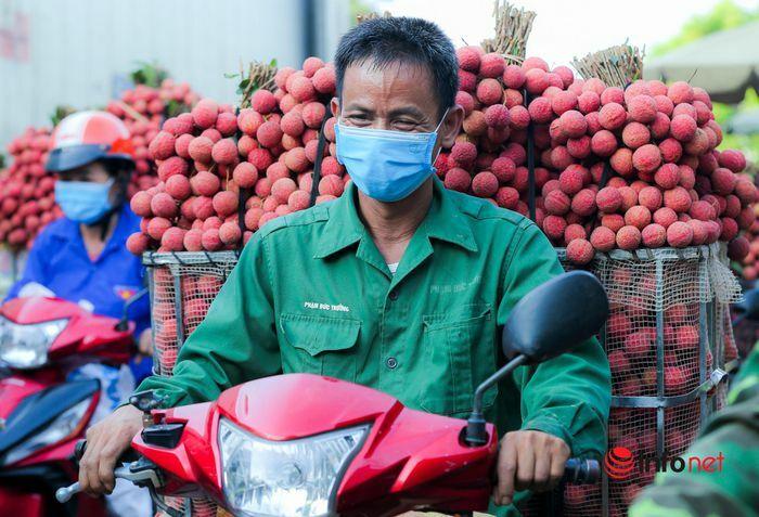 Bắc Giang: Nửa đêm bật dậy đi hái vải, điểm thu mua tắc dài cả cây số - ảnh 7