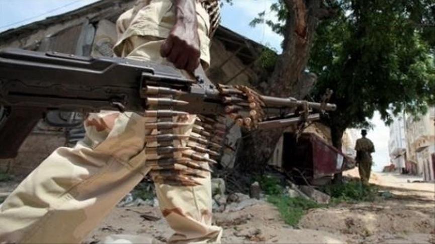 Somalia bắt giữ thủ lĩnh cấp cao của al-Shabab - ảnh 1