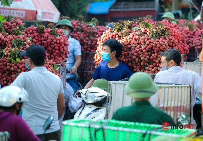 Bắc Giang: Nửa đêm bật dậy đi hái vải, điểm thu mua tắc dài cả cây số - ảnh 10