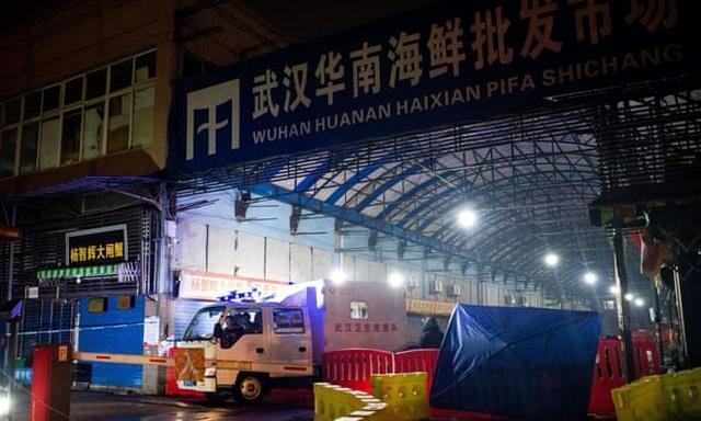 47.000 động vật hoang dã được bán tại chợ Vũ Hán trước khi COVID-19 bùng phát - ảnh 3