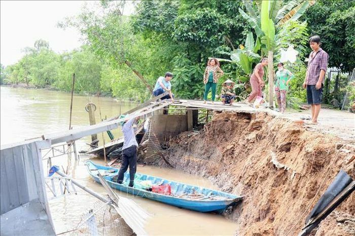 Cần Thơ: Mưa dông, sạt lở bờ sông làm sụp đổ nhà dân - ảnh 1