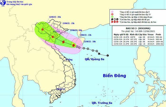Tin bão khẩn cấp: Bão số 2 giật cấp 10, hướng vào Hải Phòng đến Nghệ An - ảnh 1