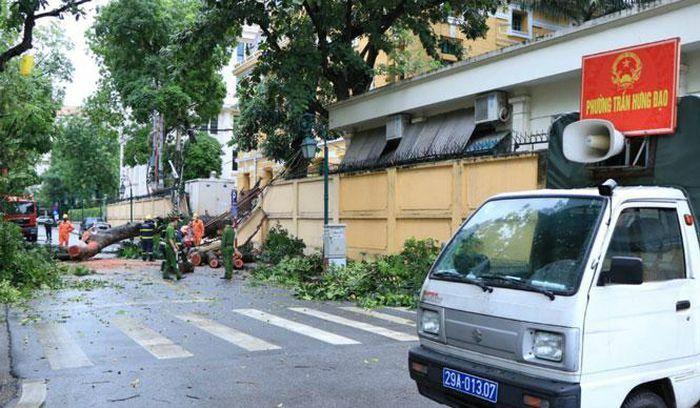Khắc phục sự cố cây đổ trên phố Hỏa Lò - ảnh 1