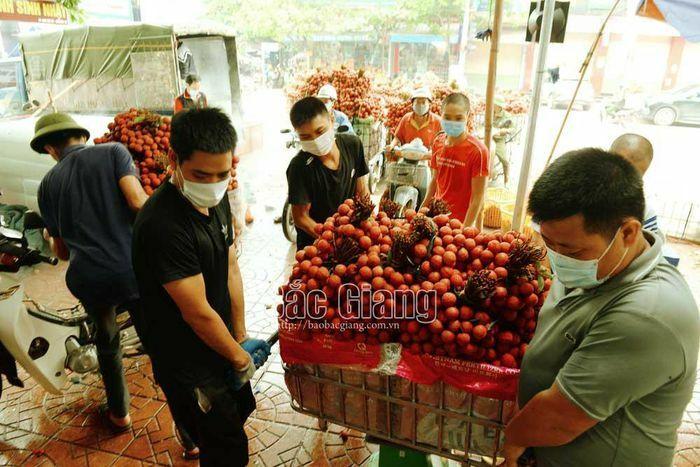 Bắc Giang: Thương nhân Trung Quốc đặt cọc thu mua 30 nghìn tấn vải thiều - ảnh 2