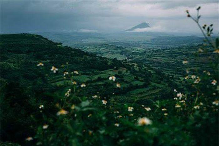 Phú Yên - Xứ sở biển xanh, mây trắng, cảnh sắc đẹp hơn cả trên phim ảnh - ảnh 15