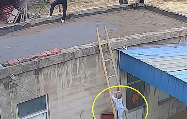 Con trai trèo thang tre theo bố lên mái nhà, trong tích tắc liền xảy ra cảnh tượng thót tim, cẩn thận khi chăm con không bao giờ là thừa - ảnh 1