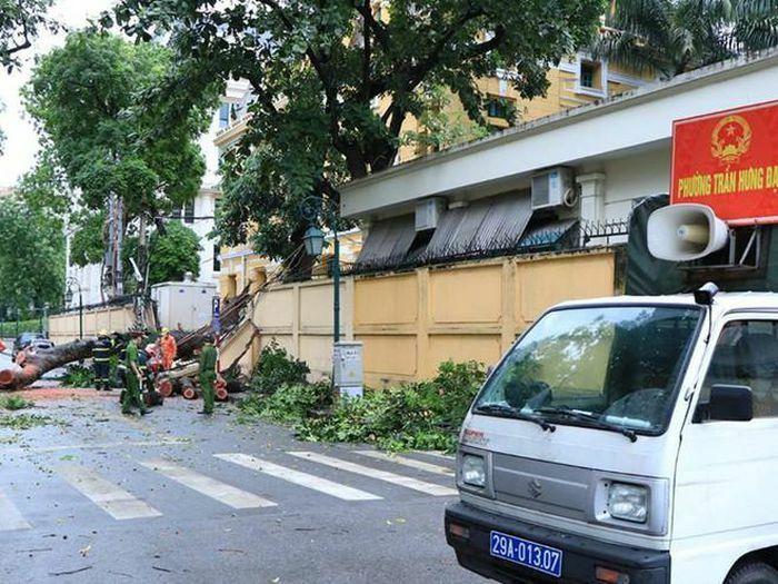 Lực lượng cứu nạn khẩn trương khắc phục sự cố cây đổ trên phố Hỏa Lò - ảnh 2