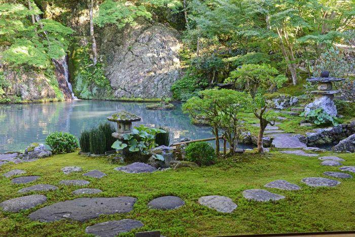 Tái sinh trong vườn Nhật Bản - ảnh 1