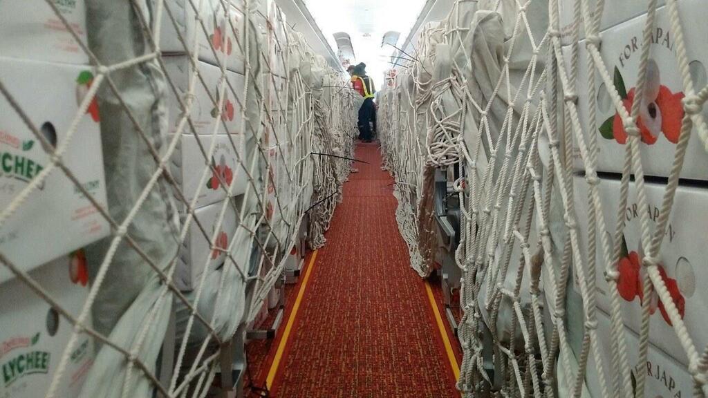 Chung tay hỗ trợ nông dân Bắc Giang, Vietjet & Swift247 vận chuyển vải thiều tới nhiều thị trường trong nước và quốc tế - ảnh 4
