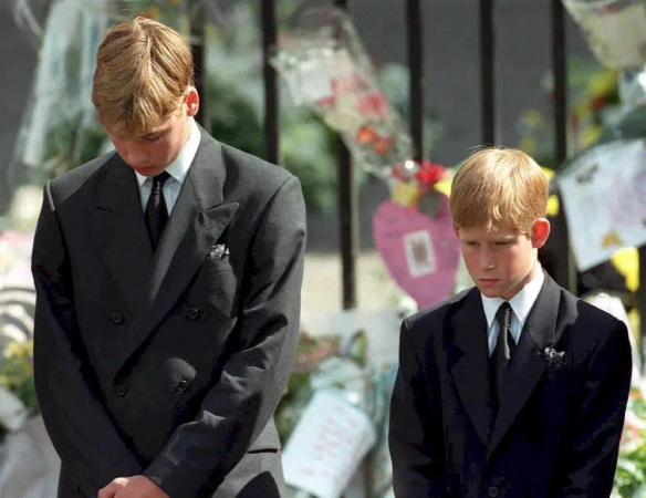 Harry nói với William: ''Nếu anh không muốn làm Vua thì để em'' - ảnh 4