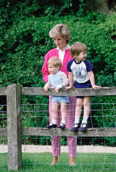Harry nói với William: ''Nếu anh không muốn làm Vua thì để em'' - ảnh 3