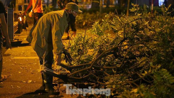 Xuyên đêm thu dọn hàng loạt cây đổ khắp phố phường Hà Nội sau mưa giông - ảnh 4