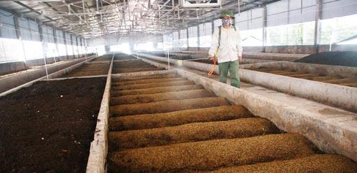 Khuyến khích xử lý phụ phẩm nông nghiệp tái sử dụng cho mục đích khác - ảnh 1