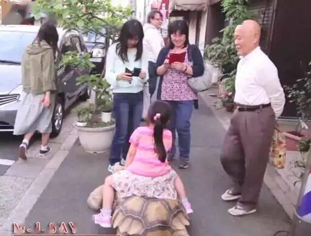 Ông lão người Nhật nuôi con rùa nặng 70kg, quãng đường 5 phút đi mất 3 tiếng: Sống chậm lại, cuộc đời quả thực đáng yêu hơn bạn nghĩ - ảnh 17