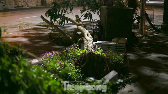 Xuyên đêm thu dọn hàng loạt cây đổ khắp phố phường Hà Nội sau mưa giông - ảnh 2