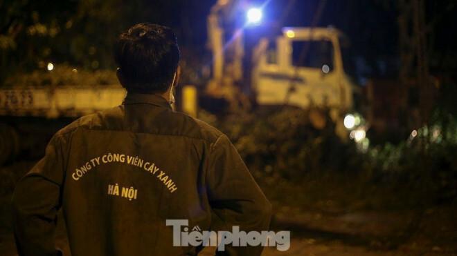 Xuyên đêm thu dọn hàng loạt cây đổ khắp phố phường Hà Nội sau mưa giông - ảnh 11