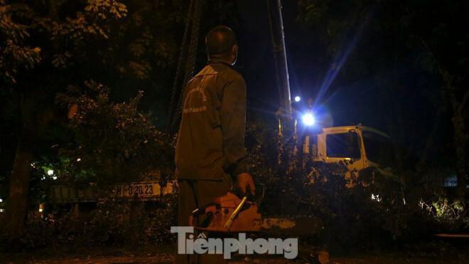 Xuyên đêm thu dọn hàng loạt cây đổ khắp phố phường Hà Nội sau mưa giông - ảnh 7