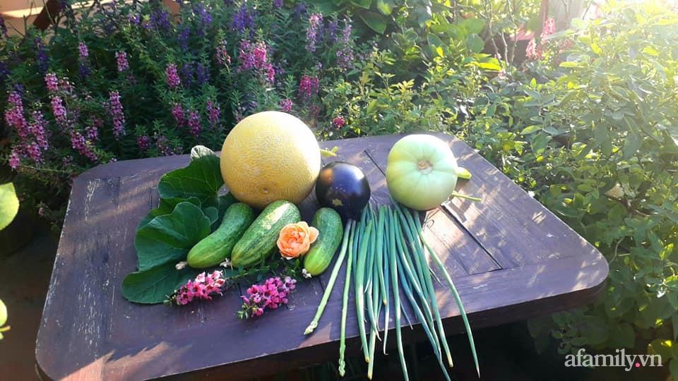 Sân thượng 50m² không khác gì trang trại với đủ loại rau quả sạch theo mùa của mẹ đảm ở Hà Nội - ảnh 25