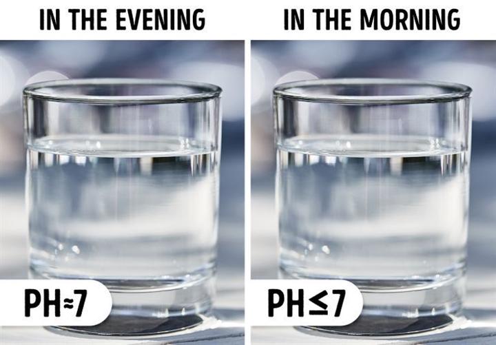 Vì sao không nên để cốc nước qua đêm gần giường ngủ? - ảnh 5