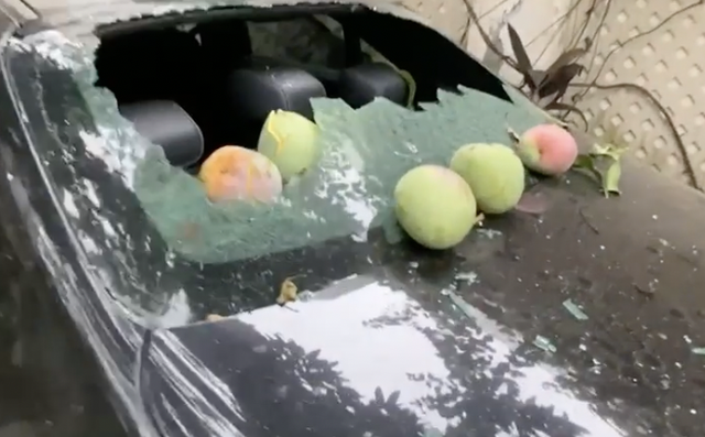 """Thêm anh bán trái cây có nỗi buồn giống chị Phượng Chanel: Sầu riêng rụng làm kính xe ô tô vỡ nát, lỡ có người bên trong coi như """"toang""""! - ảnh 4"""