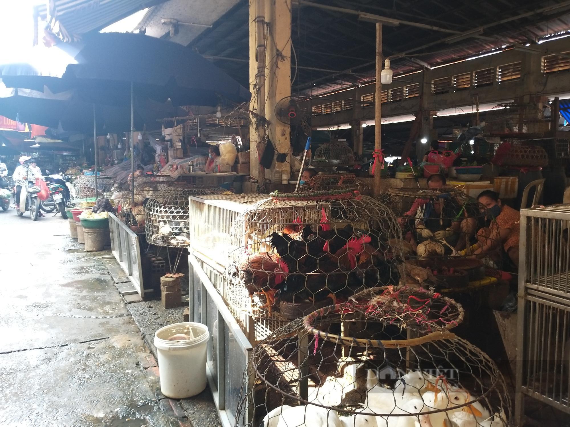 Giá gia cầm hôm nay 24/7: Cập nhật giá gà, vịt tại chợ đầu mối gia cầm lớn nhất miền Bắc - ảnh 2