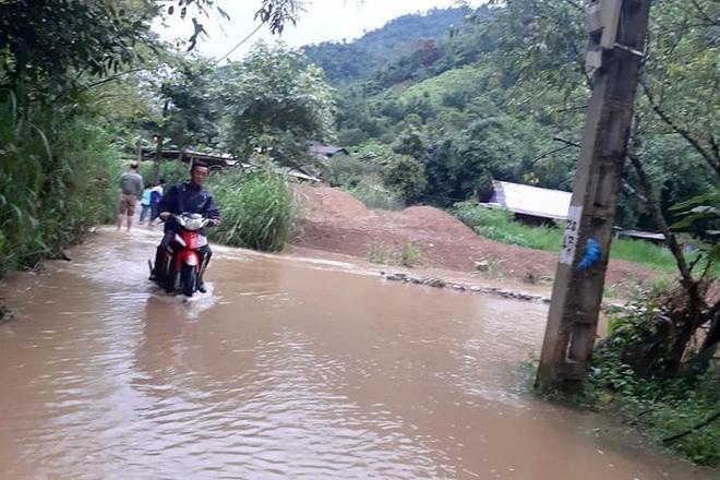 Mưa lớn suốt 24 giờ gây ngập lụt ở huyện cao nhất Nghệ An - ảnh 5