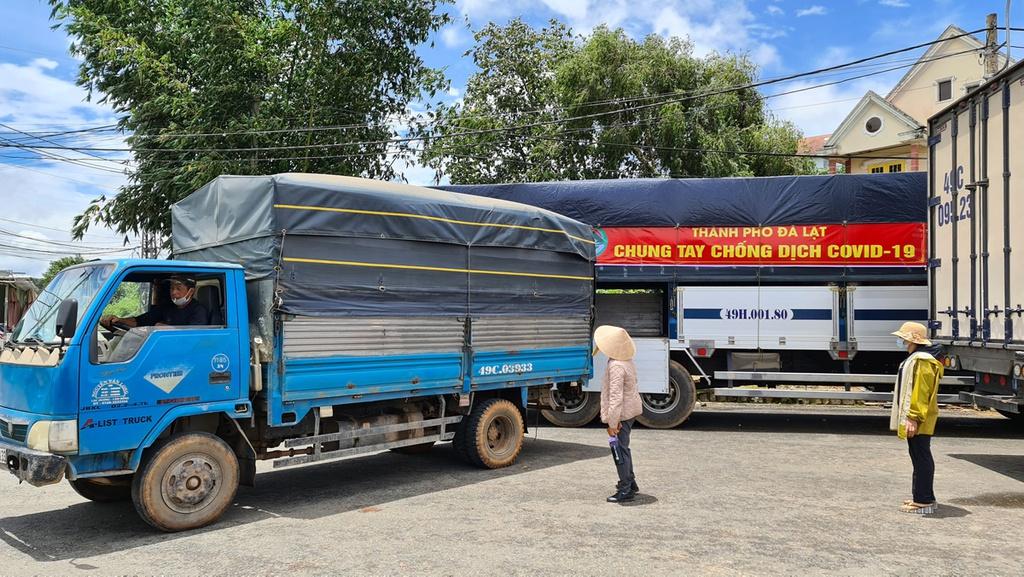 Hơn 250 tấn rau củ từ Đà Lạt hỗ trợ TP.HCM và các tỉnh vùng dịch Covid-19 - ảnh 13