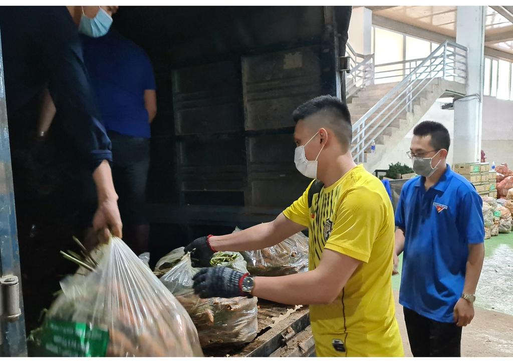 Hơn 250 tấn rau củ từ Đà Lạt hỗ trợ TP.HCM và các tỉnh vùng dịch Covid-19 - ảnh 8