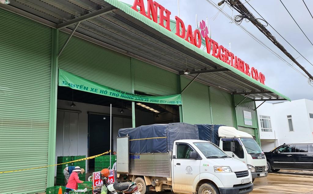 Hơn 250 tấn rau củ từ Đà Lạt hỗ trợ TP.HCM và các tỉnh vùng dịch Covid-19 - ảnh 4