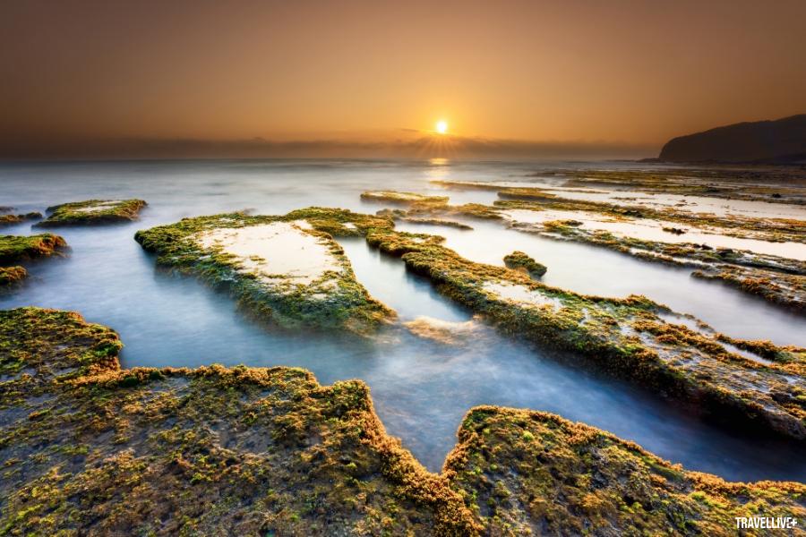 Gành Đá Đĩa Phú Yên tuyệt đẹp qua lăng kính vlogger Bùi Tiên Phong - ảnh 8