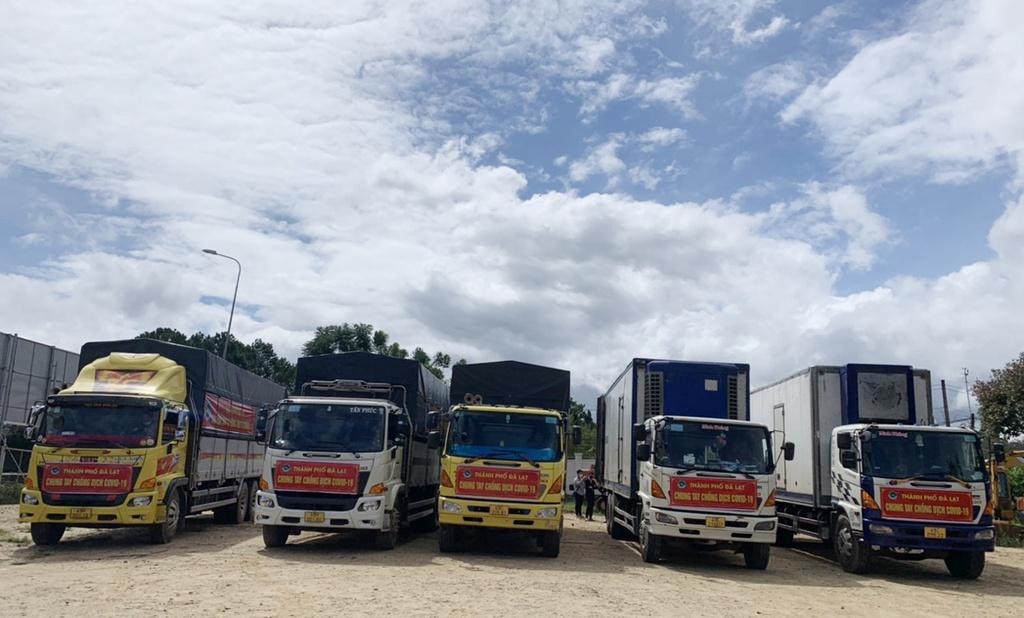 Hơn 250 tấn rau củ từ Đà Lạt hỗ trợ TP.HCM và các tỉnh vùng dịch Covid-19 - ảnh 3