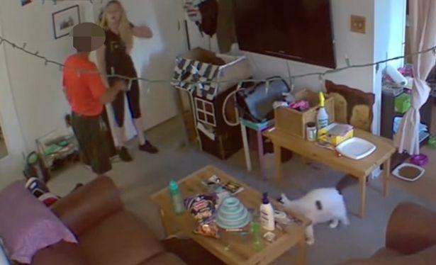 Đặt camera giám sát căn hộ lúc đi vắng, cô gái rợn người phát hiện hành động biến thái của chủ nhà - ảnh 3