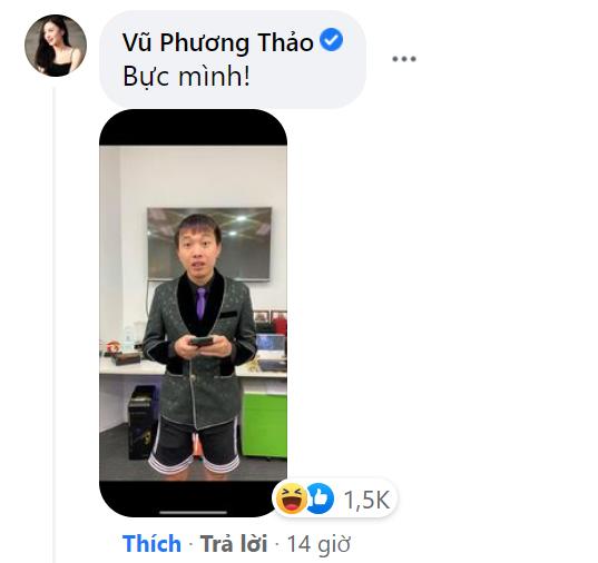 """Bị lập tài khoản facebook giả mạo, """"MC quốc dân"""" Phương Thảo tuyên bố một câu """"xanh rờn"""" - ảnh 9"""