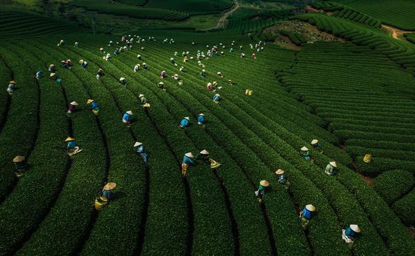[ẢNH] Việt Nam nhìn từ... lưng chừng trời - ảnh 8