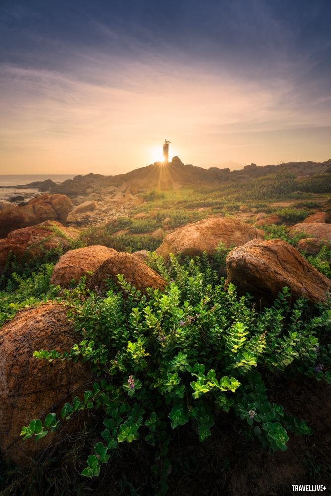 Gành Đá Đĩa Phú Yên tuyệt đẹp qua lăng kính vlogger Bùi Tiên Phong - ảnh 7