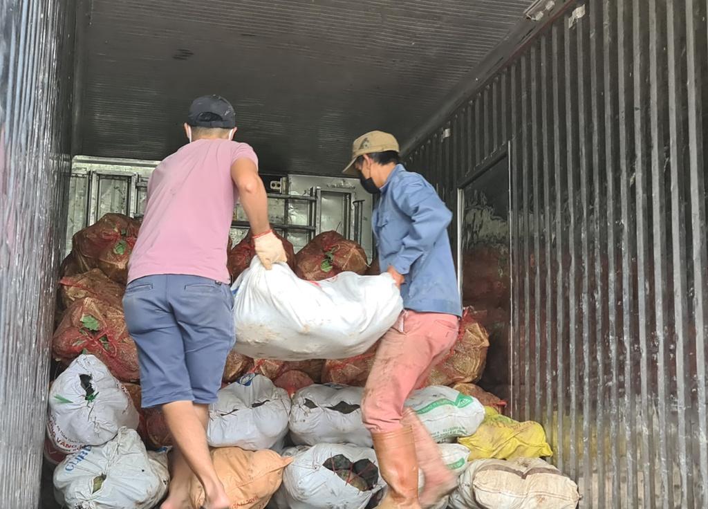 Hơn 250 tấn rau củ từ Đà Lạt hỗ trợ TP.HCM và các tỉnh vùng dịch Covid-19 - ảnh 9
