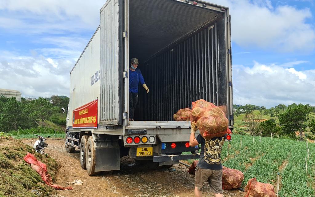 Hơn 250 tấn rau củ từ Đà Lạt hỗ trợ TP.HCM và các tỉnh vùng dịch Covid-19 - ảnh 10