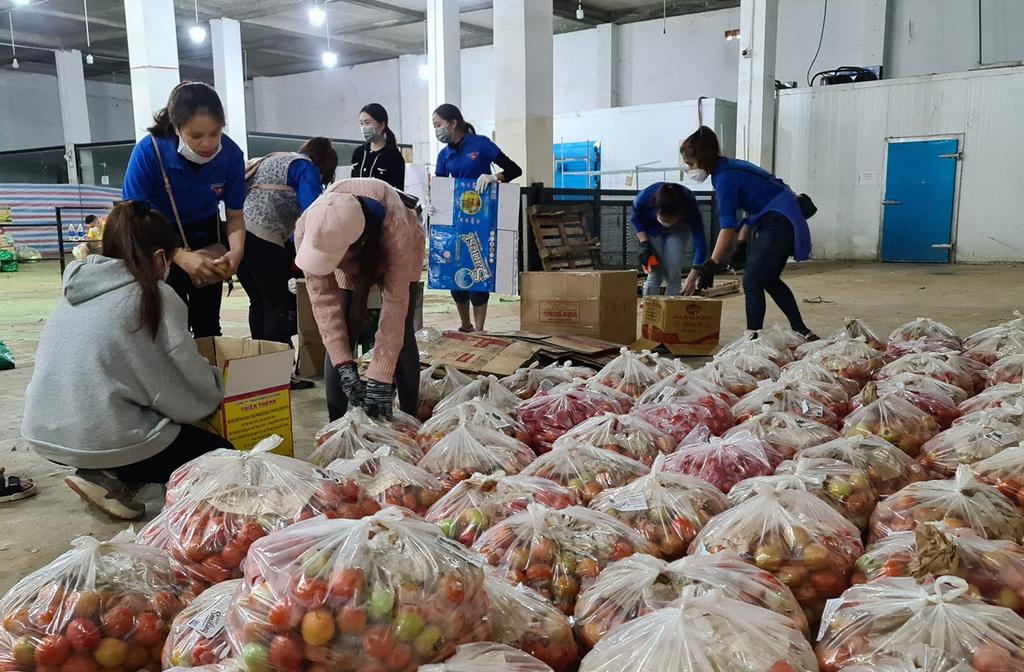 Hơn 250 tấn rau củ từ Đà Lạt hỗ trợ TP.HCM và các tỉnh vùng dịch Covid-19 - ảnh 7