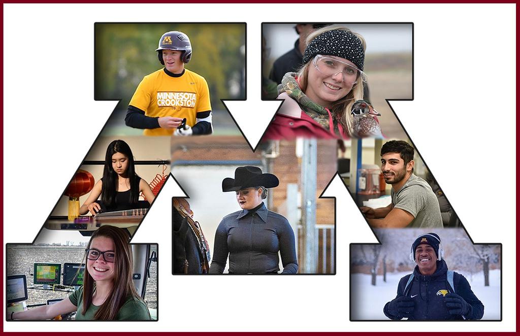 Học cử nhân Ngôn ngữ Anh liên kết ĐH Minnesota Crookston và ĐH KHXH&NV TP.HCM - ảnh 2