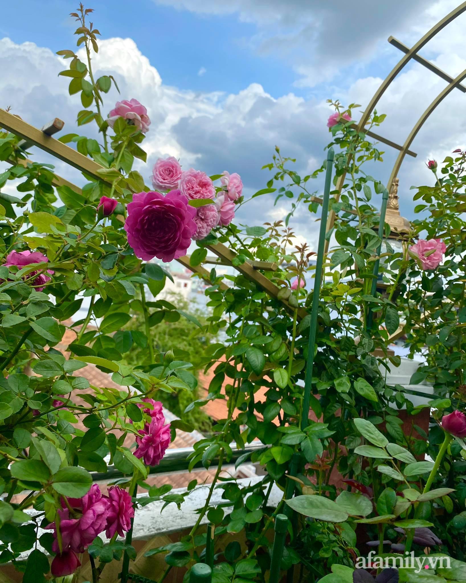 Sân thượng phủ kín hoa hồng và rau quả sạch ở Sài Gòn của Hoa hậu Janny Thủy Trần - ảnh 20