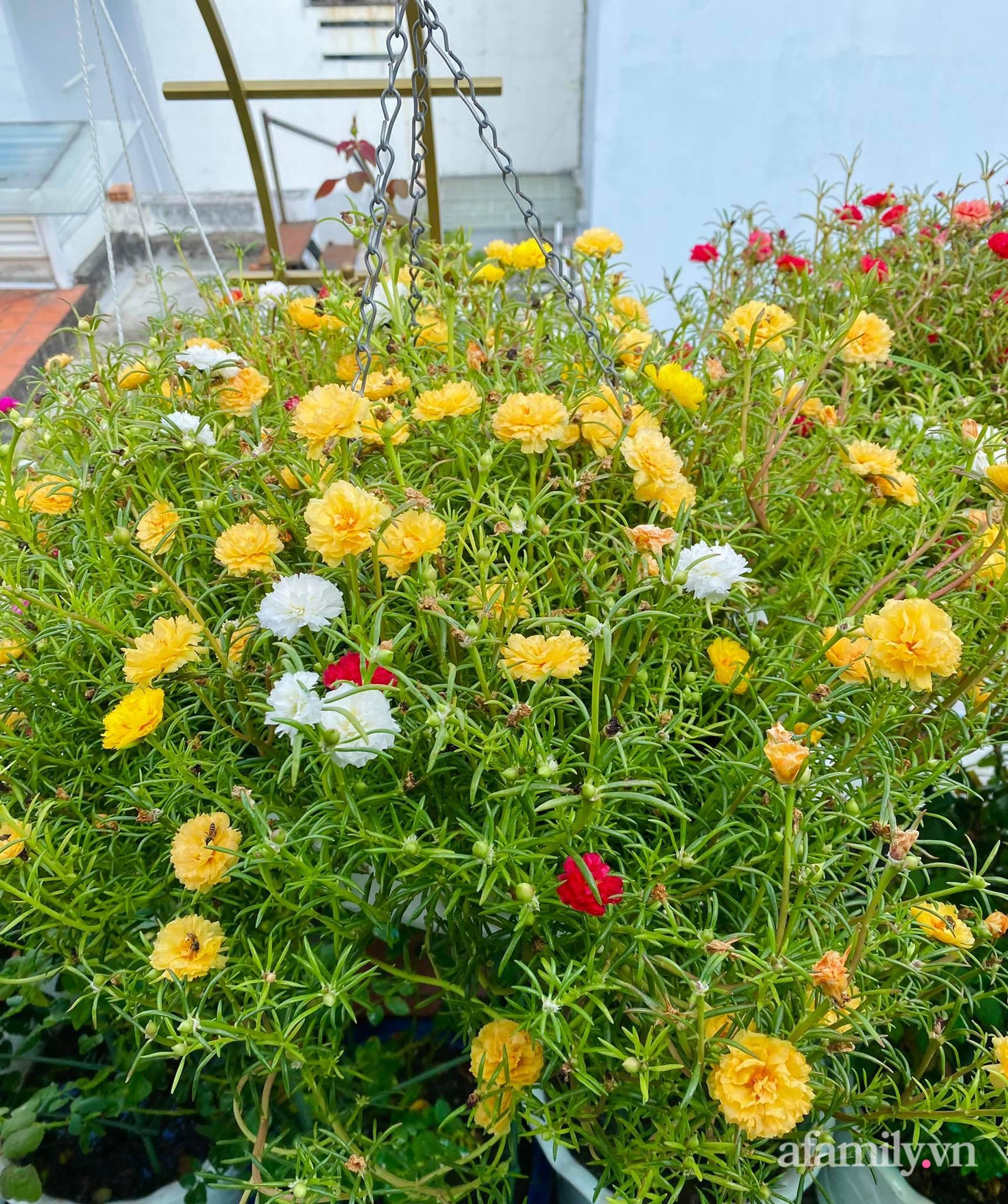 Sân thượng phủ kín hoa hồng và rau quả sạch ở Sài Gòn của Hoa hậu Janny Thủy Trần - ảnh 23