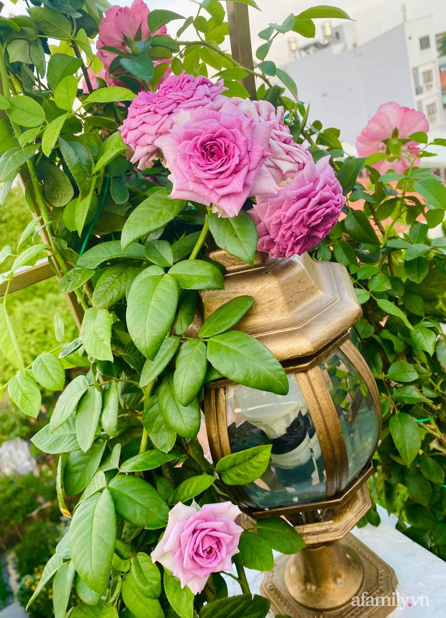 Sân thượng phủ kín hoa hồng và rau quả sạch ở Sài Gòn của Hoa hậu Janny Thủy Trần - ảnh 19