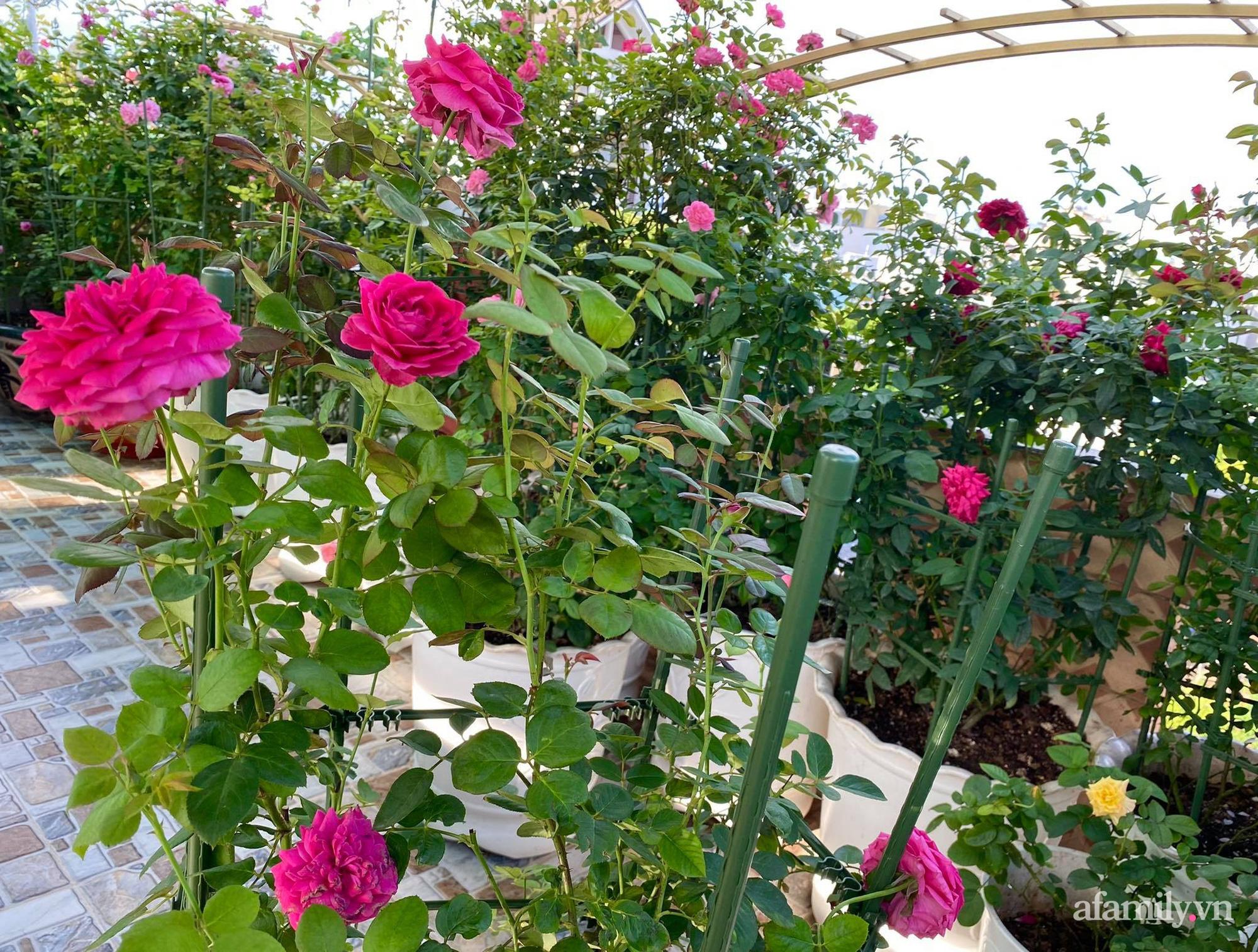 Sân thượng phủ kín hoa hồng và rau quả sạch ở Sài Gòn của Hoa hậu Janny Thủy Trần - ảnh 7