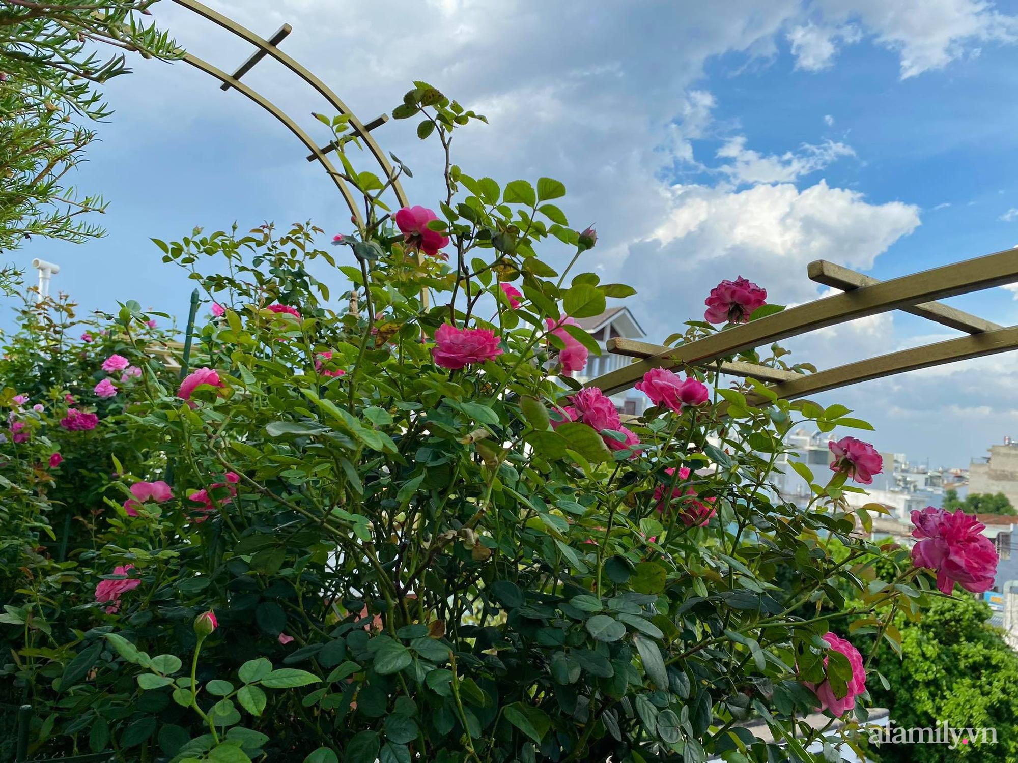 Sân thượng phủ kín hoa hồng và rau quả sạch ở Sài Gòn của Hoa hậu Janny Thủy Trần - ảnh 16