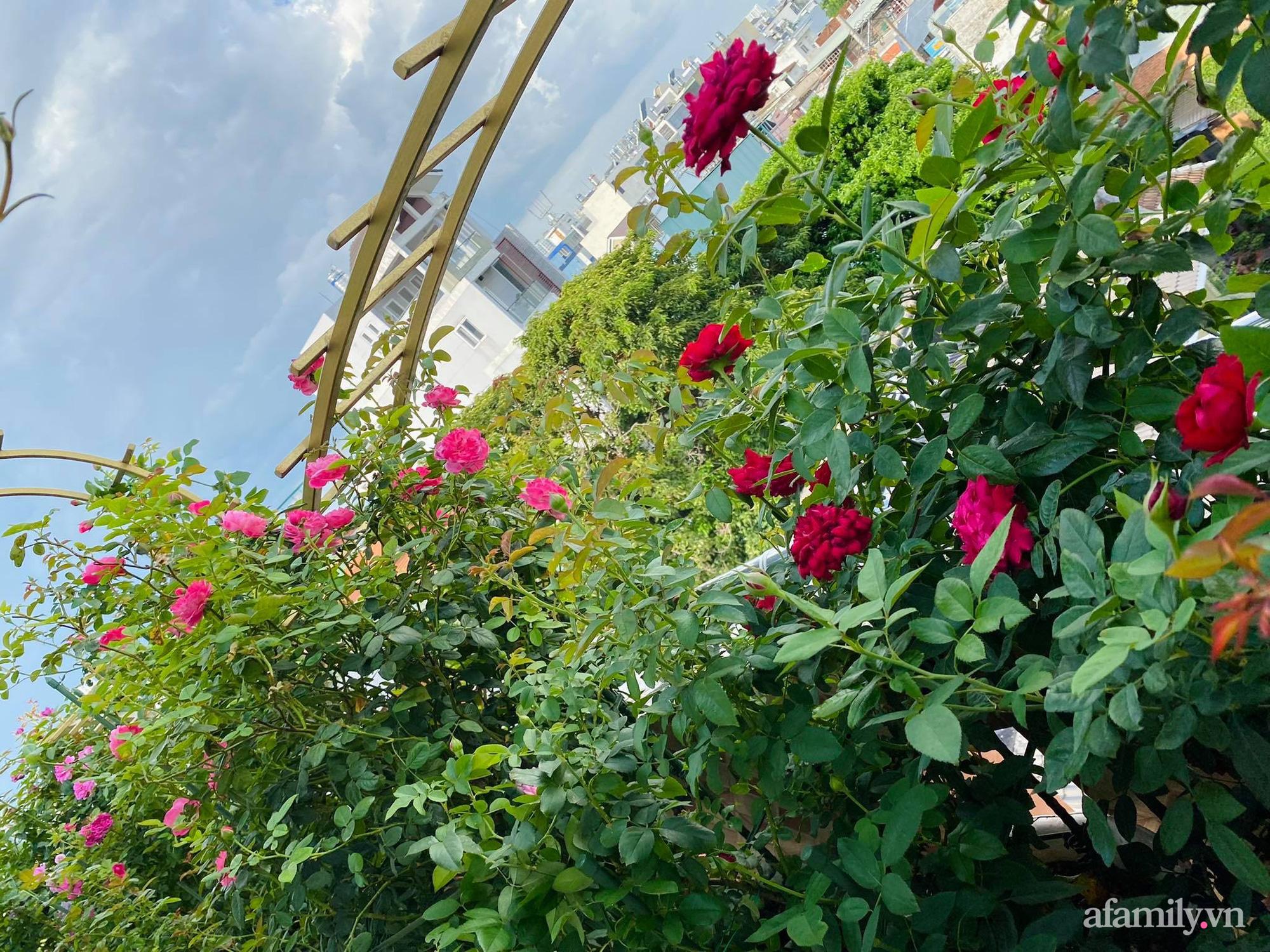 Sân thượng phủ kín hoa hồng và rau quả sạch ở Sài Gòn của Hoa hậu Janny Thủy Trần - ảnh 6