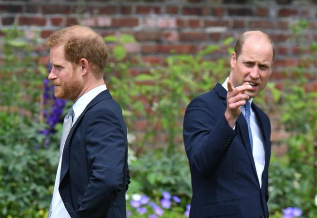Hoàng tử Harry ôm hận trong lòng vì một câu nói của anh trai William, gây ra mối thù dai dẳng - ảnh 3