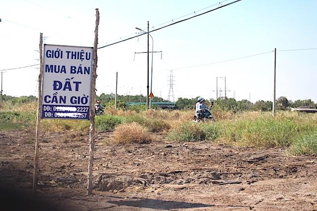 Người dân Tp.HCM có thể đi du lịch Cần Giờ vào cuối tháng 9, BĐS nơi đây sẽ diễn biến ra sao? - ảnh 1