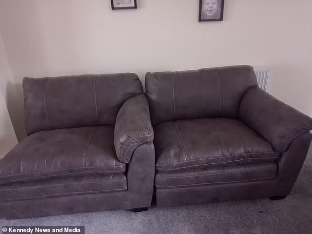 Đặt mua sofa qua mạng, sau 4 tháng chờ đợi người đàn ông dở khóc dở cười với món hàng nhận được - ảnh 2