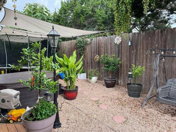 Ngắm vườn rau 350 m2 của ca sĩ Quách Thành Danh ở Mỹ - ảnh 13